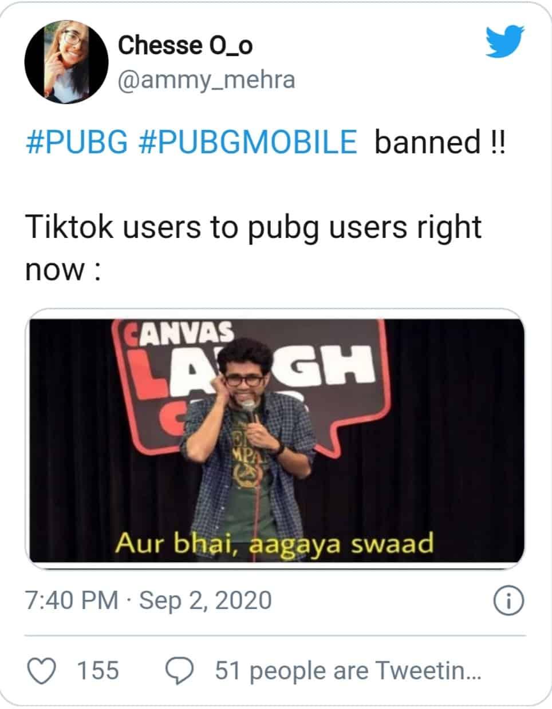 PUBG ban (tiktokers teasing pubg players